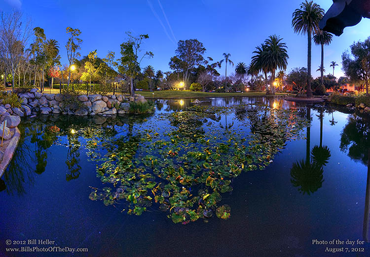 Alice Keck Park Memorial Gardens Duck Pond after Dark, Santa Barbara, CA