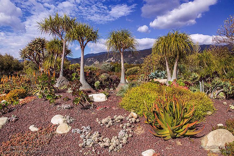 Seaside Gardens, Carpinteria, California