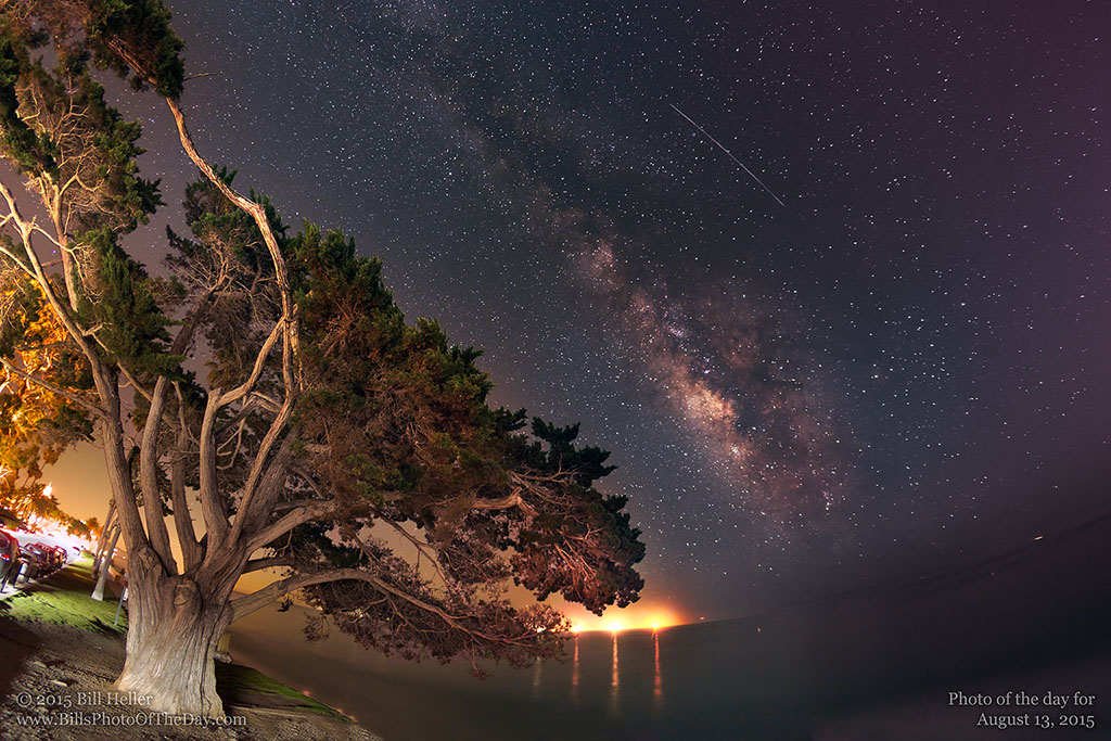 Cypress and Perseid